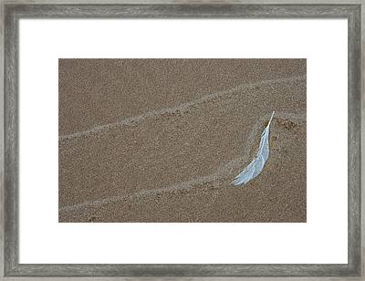 Usa, Michigan, Gull Feather And Wave Framed Print by Jaynes Gallery