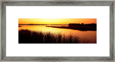 Usa, Minnesota, Otter Tail County, Deer Framed Print by Panoramic Images