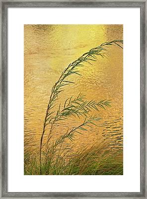 Usa, New Mexico Grass And Sky Framed Print