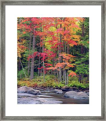 Usa, New York, Autumn In The Adirondack Framed Print