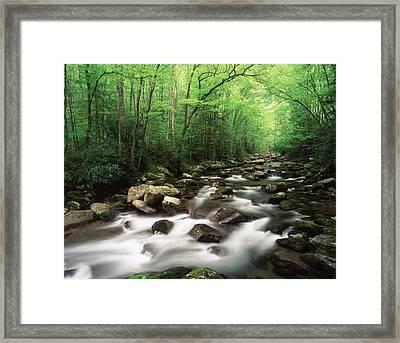 Usa, North Carolina, Great Smoky Framed Print by Adam Jones