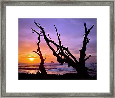 Usa, Oregon, Cape Meares Framed Print