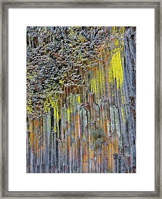 Usa, Oregon Columnar Basalt Covered Framed Print by Jaynes Gallery