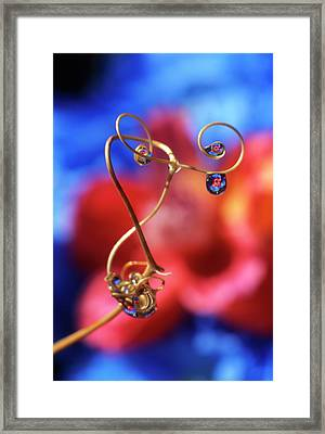 Usa, Oregon, Dewdrops On Sweet Pea Framed Print by Jaynes Gallery