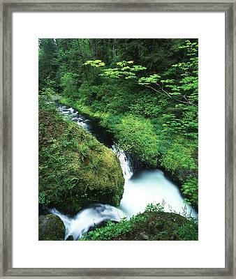 Usa, Oregon, Eagle Creek, View Framed Print