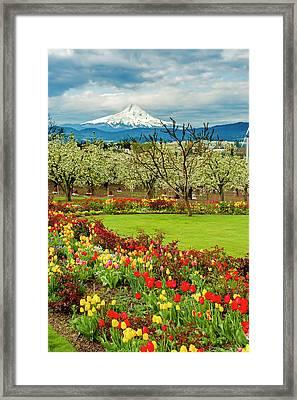 Usa, Oregon, Hood River Framed Print by Richard Duval