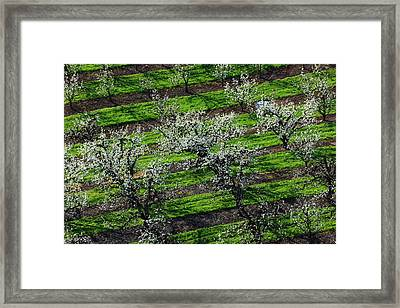 Usa, Oregon, Hood River Valley, An Framed Print by Rick A Brown