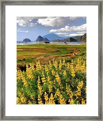 Usa, Oregon, Ophir Framed Print