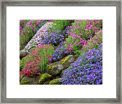 Usa, Oregon, Portland, Slope Framed Print by Jaynes Gallery