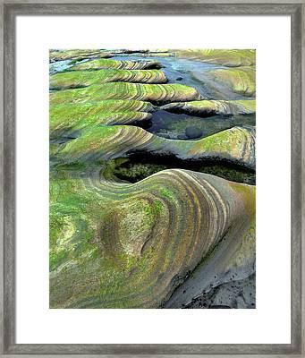 Usa, Oregon, Seal Rock Beach Wayside Framed Print