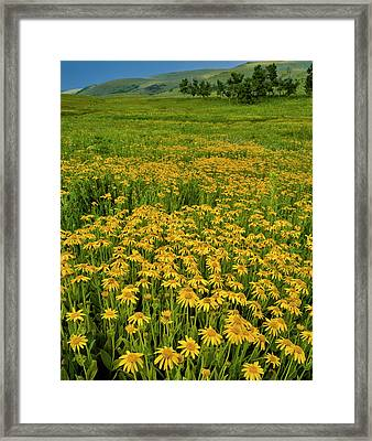 Usa, Oregon, Steens Mountain Framed Print by Jaynes Gallery
