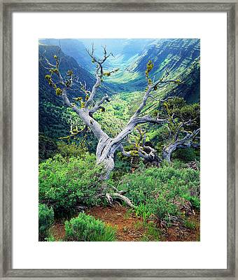 Usa, Oregon, View Of Steens Mountain Framed Print by Scott T. Smith