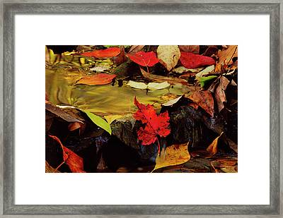 Usa, Pennsylvania, Pocono Mountains Framed Print
