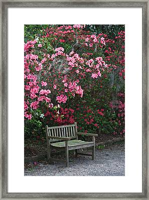 Usa, South Carolina, Charleston Framed Print by Jaynes Gallery