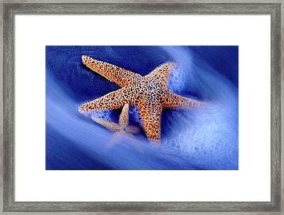 Usa, South Carolina, Hilton Head Island Framed Print by Jaynes Gallery