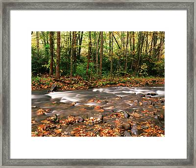 Usa, Tennessee, Great Smoky Mountains Framed Print by Walter Bibikow