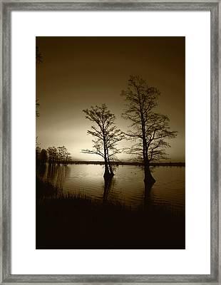 Usa, Tennessee, Reelfoot National Framed Print by Adam Jones