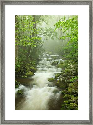 Usa, Tennessee, Stream In The Fog Framed Print by Joanne Wells