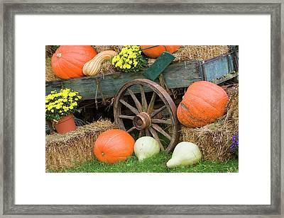Usa, Tennessee, Townsend Framed Print by Jaynes Gallery