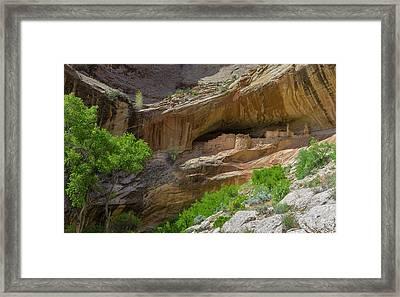 Usa, Utah, Bluff Framed Print by Charles Crust
