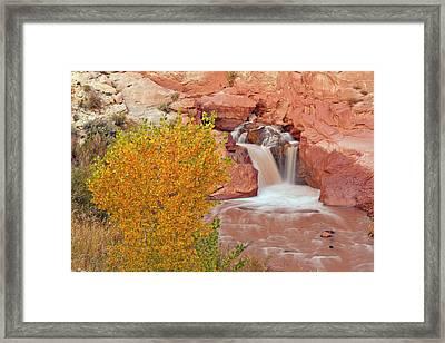 Usa, Utah, Capitol Reef National Park Framed Print