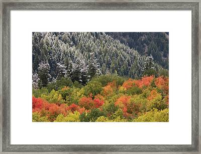 Usa, Utah, Little Cottonwood Canyon Framed Print