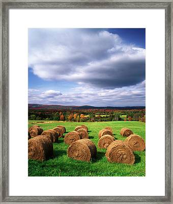 Usa, Vermont, Westmore, Hay Bales Framed Print