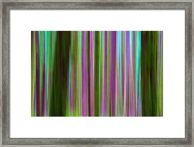 Usa, Washington Abstract Of Hoh Rain Framed Print