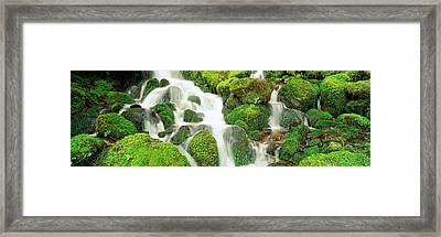 Usa, Washington, Olympic National Park Framed Print by Panoramic Images