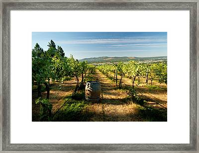 Usa, Washington, Spokane Framed Print