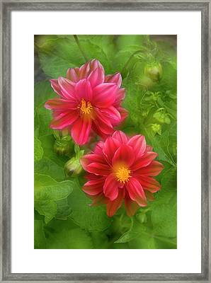 Usa, Washington, Whidbey Island Framed Print by Jaynes Gallery