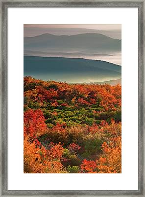 Usa, West Virginia, Dolly Sods Framed Print
