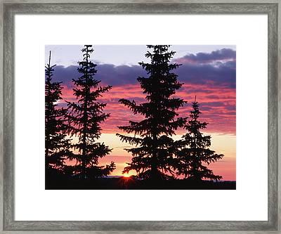 Usa, Wyoming, Medicine Bow National Framed Print