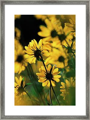 Usa, Wyoming, Sierra Madre Medicine Bow Framed Print by Scott T. Smith