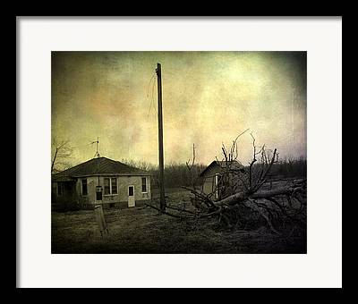 Uprooted Tree Framed Prints