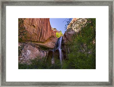 Utah Calf Falls Framed Print by Michael J Bauer
