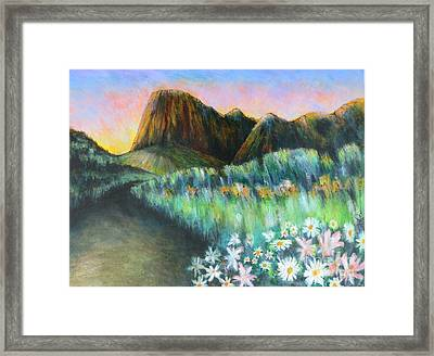 Utah Capital Reef Park Framed Print