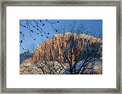 Utah Usa View Of The Watchman In Zion Framed Print