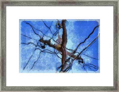 Utility Pole Framed Print by Ayse Deniz