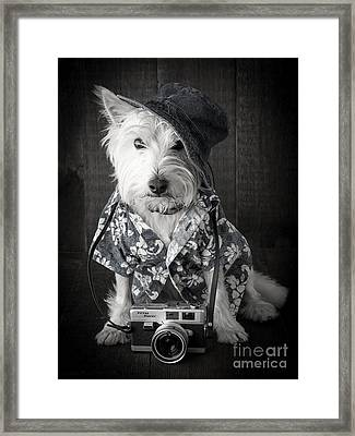 Vacation Dog With Camera And Hawaiian Shirt Framed Print by Edward Fielding