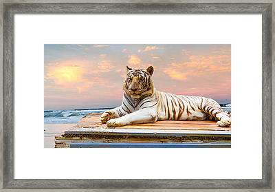 Vaction Framed Print