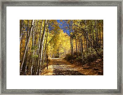 Vail Colorado Fall Bike Path Framed Print by Michael J Bauer