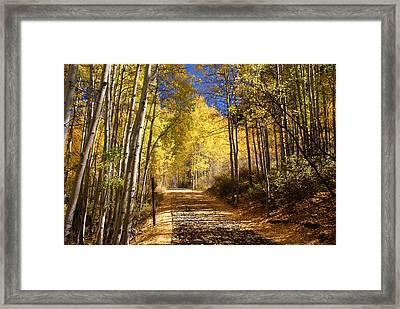 Vail Colorado Fall Bike Path Framed Print