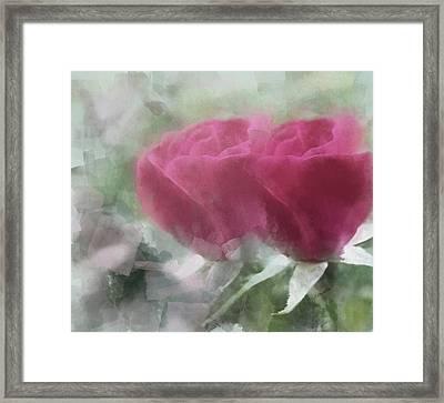 Valentine's Roses Framed Print