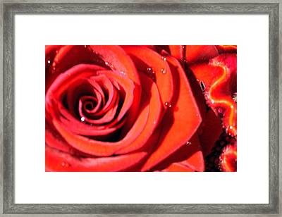 Valentine's Framed Print by Sarah OToole