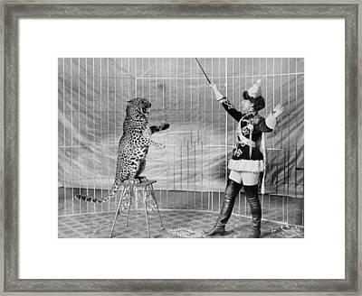 Vallecitas Leopards. Female Animal Framed Print by Everett