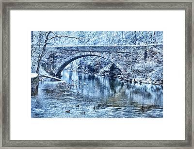 Valley Green Ducks In Winter Framed Print by Bill Cannon