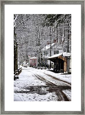 Valley Green In Winter Along Forbidden Drive Framed Print by Bill Cannon