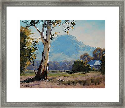 Valley Gum Tree Framed Print
