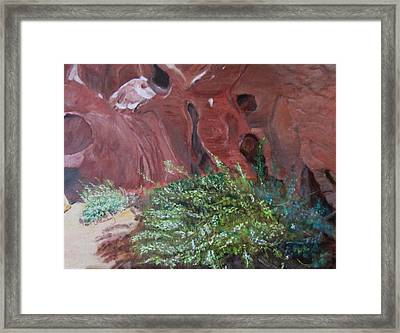 Valley Of Fire State Park Framed Print